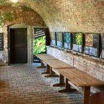 AOC posiluje své profesionální portfolio o tři nové monitory